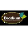 Bradium